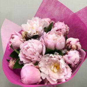 Peony Flowers Adelaide